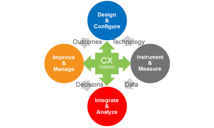 Anatomy of a CX Program